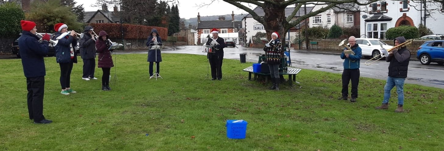 Members of Cawthorne Band are playing in a distanced line on the green grass of Cawthorne Village Green with a tree in the background
